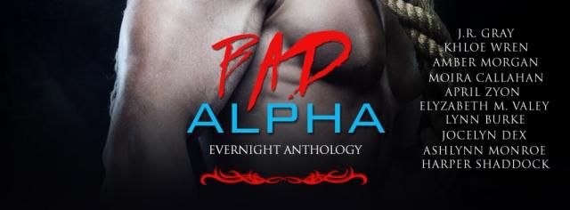 BadAlhaMF-evernightpublishing-jayaheer2015-banner (1)