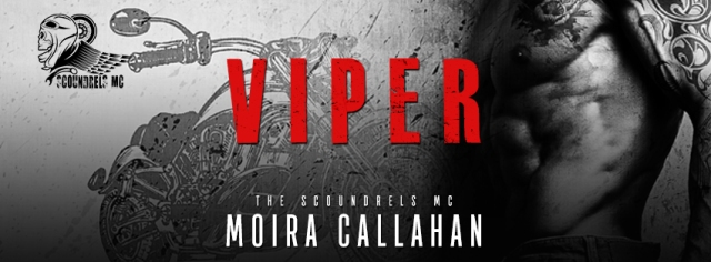 VIPER_evernightpubishing-JayAheer2016-ebook-banner1