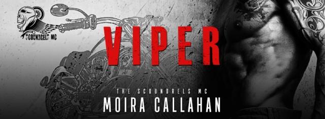 VIPER_evernightpubishing-JayAheer2016-ebook-banner1