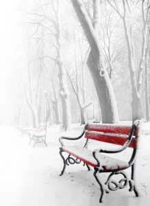 Red benches in the fog in winter